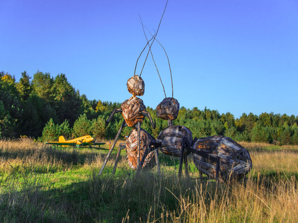 Art objects on the ant trail in the village of Morshchiinskaya, Kenozersky National Park