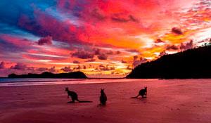 Тропические приключения и «другая» Австралия