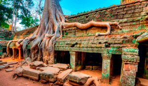 Вся экзотика Камбоджи