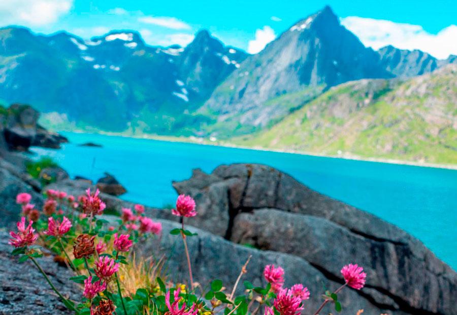 Тур в Северную Норвегию