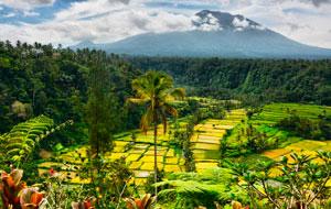 Лучшие фотографии Юго-Восточной Азии